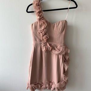 Beautiful nude BCBG dress tags on